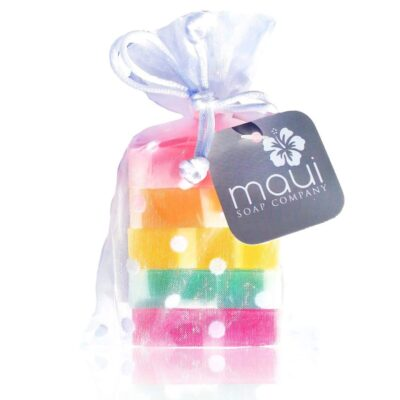 Rainbow Soap-Hawaiian Gift Set - Maui Soap Company