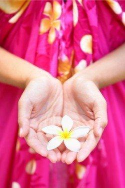 plumeria-in-hand-hawaiian-body-care