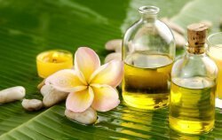 Hawaiian Soaps and skin care products made with natural and organic ingredients.