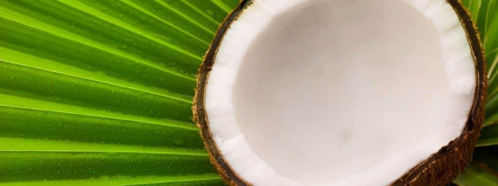 Organic-Coconut-Soap-Lotion-Hawaiian-Body-Skin-Care