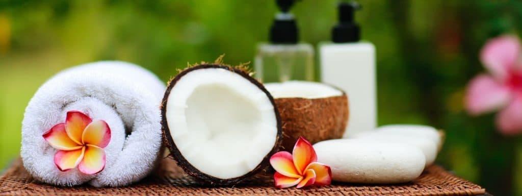 hawaiian-body-care-plumeria-soap-coconuts