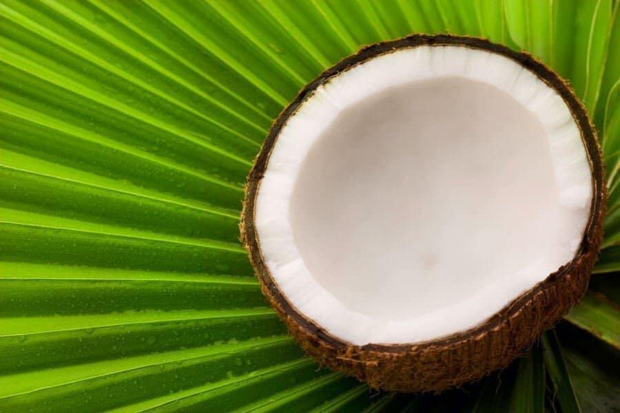 coconut-palm-leaf-hawaiian-soap-with-coconut-milk-best-skin-care-body-line-hawaiian-soap-company-coconut