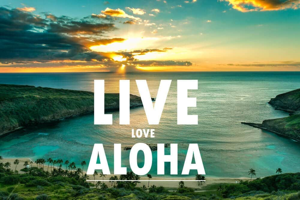 live-love-aloha