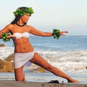 Aloha 'Aina