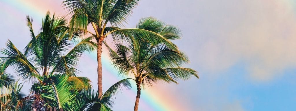 Best-Coconut-Maui-Soap-Copany-Hawaiian-Bath-and-Body Organic and natural