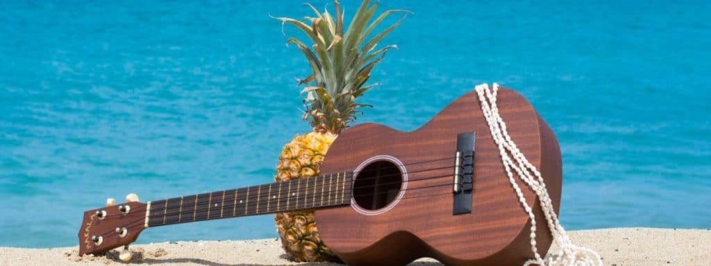 Ukulele-Hawaiii-pineapple-maui-soap-company-best-soaps-hawaiian-gifts-lotion
